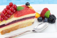 Cake with fruit jelly Stock Photos