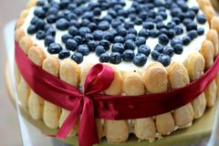 Cake with fruits. Homemade cake with summer fruits Stock Image