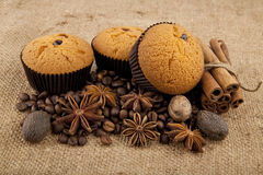 Cake, grains of coffee and seasoning Royalty Free Stock Images