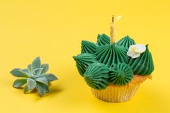 Cake with green cream in the form of a cactus or succulent, with a burning candle, on a yellow background, next to a royalty free stock photography