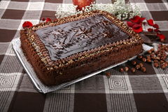 Cake hazelnuts. With chocolate and decoration Stock Image