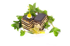 Cake with lemon and mint. Two slices of cake with mint leaves and slices of Lemon Royalty Free Stock Photo