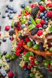 Cake made of wild fresh berry fruits Stock Photography