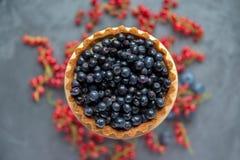 Cake med blåbär Stor kaka-korg med blåbär och CR Arkivfoton