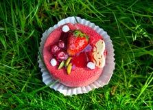 Cake met aardbei op gras Royalty-vrije Stock Afbeeldingen