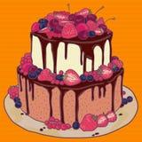 Cake met aardbeien, kersen, bosbessen en chocolade Stock Afbeelding