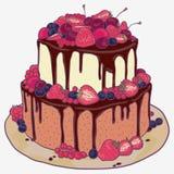 Cake met aardbeien, kersen, bosbessen en chocolade Royalty-vrije Stock Foto