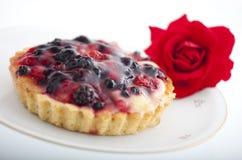 Cake met bessen Royalty-vrije Stock Foto