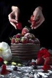 Cake met chocolade die met aardbei en bloemen verfraaien Royalty-vrije Stock Fotografie