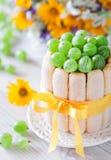 Cake met kruisbessen Royalty-vrije Stock Foto's