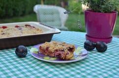 Cake met Pruimen en Amandelen in een Tuin worden gediend die stock foto's