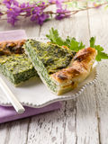 Cake met ricotta en spinazie royalty-vrije stock afbeelding