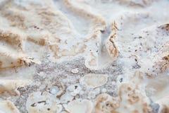 Cake met slagroom die, vet, vet detergent oplossend vet berijpen royalty-vrije stock foto's