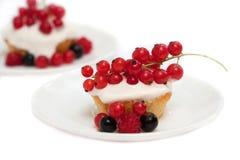 Cake met verse bessen, zwarte, rode aalbessen en frambozen Royalty-vrije Stock Foto's