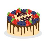 Cake met verse verschillende bessen royalty-vrije illustratie