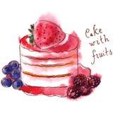 Cake met vruchten royalty-vrije illustratie