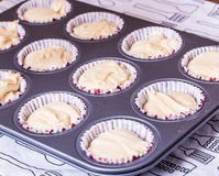 Cake mix put in the baking tray Royalty Free Stock Photography