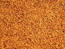 Cake mustard seed. Stock Images