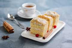 Cake Napoleon, puff pastry, vanilla slice or custard slice, garnished with cranberry Stock Images