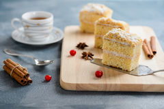 Cake Napoleon, puff pastry, vanilla slice or custard slice, garnished with cranberry royalty free stock photo
