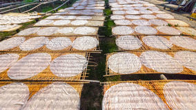 Cake noodles drying on the field Royalty Free Stock Images