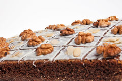 A cake with nuts. Royalty Free Stock Photos