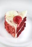 Cake op een plaat Royalty-vrije Stock Fotografie