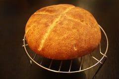 Cake op een Ronde Koeler royalty-vrije stock afbeeldingen