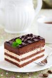 Cake Opera. Stock Images