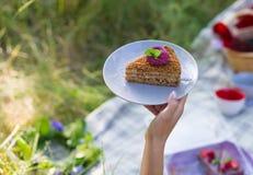 cake på en platta Arkivfoton