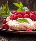 Cake Pavlova Fotografering för Bildbyråer