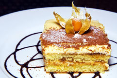 Tiramisu cake with physalis on top. On white plate Royalty Free Stock Images