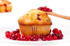 Cake on a plate with cranberries Royalty Free Stock Images
