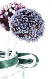 Cake pop with coloured sprinkles Stock Photography