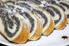 Cake with poppy seeds Stock Image