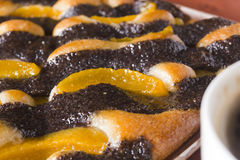 Cake with poppy seeds and oranges Stock Image