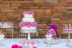 Cake pops and cupcakes. Wedding cake pops and cupcakes stock photo