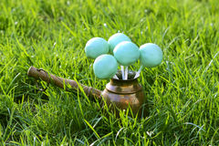 Cake pops on green grass in spring garden Royalty Free Stock Image