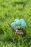 Cake pops on green grass in spring garden Stock Photo