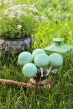 Cake pops on green grass in spring garden Royalty Free Stock Photo