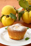 Cake with quince Royalty Free Stock Photos