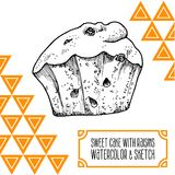 Cake with raisins and watercolor sketch Royalty Free Stock Images