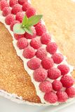Cake with  raspberries Royalty Free Stock Images
