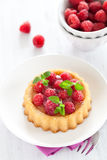 Cake with raspberries Royalty Free Stock Photo