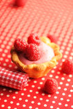 Cake with raspberry yogurt dessert. With shallow DOF Royalty Free Stock Photos
