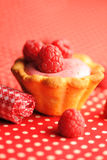 Cake with raspberry yogurt dessert. With shallow DOF Stock Photography