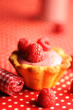 Cake with raspberry yogurt dessert. With shallow DOF Royalty Free Stock Photography