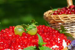 Cake with red currants Royalty Free Stock Photos