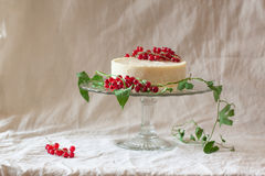 Cake with redcurrant Royalty Free Stock Images