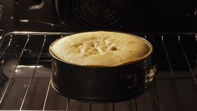 Cake rising in the oven